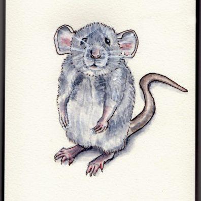 Fancy Rat & Mouse Day