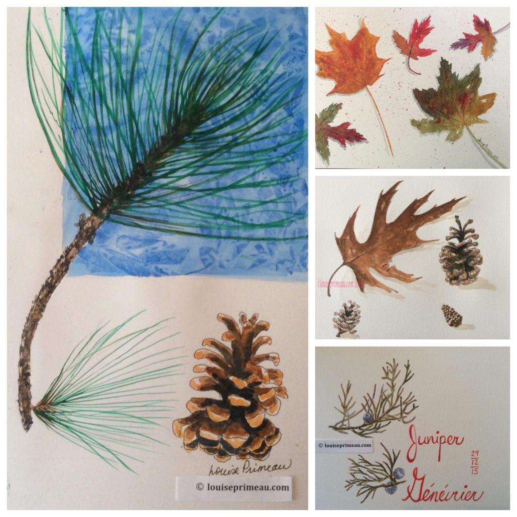 Doodlewashes by Louise Primeau