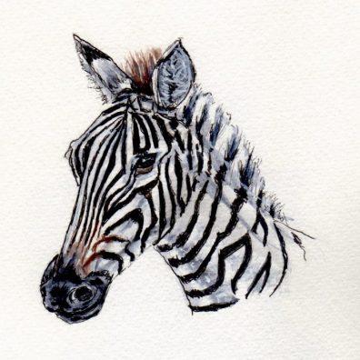 Zebra Doodlewash