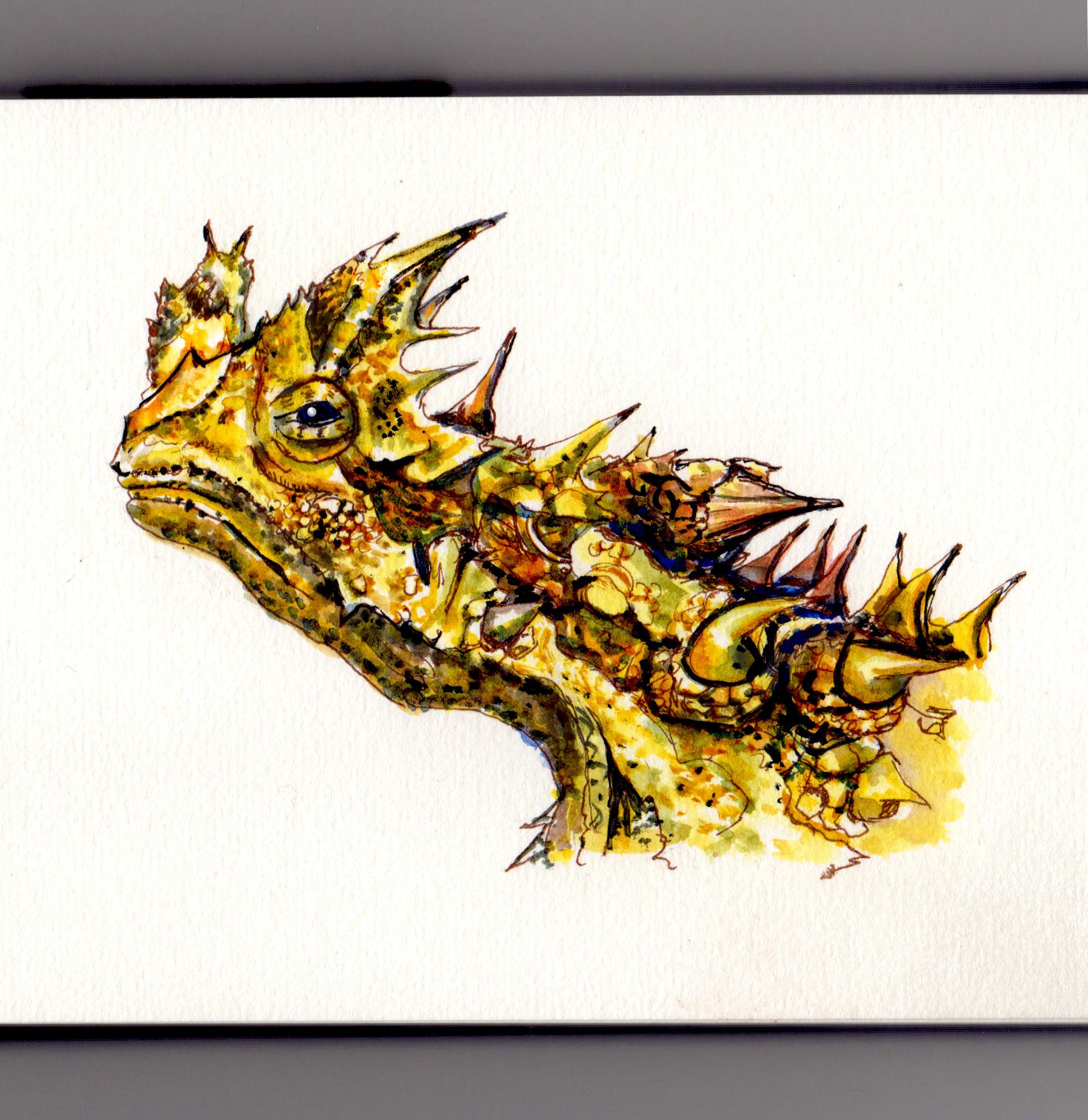 Sightings Dragon Map