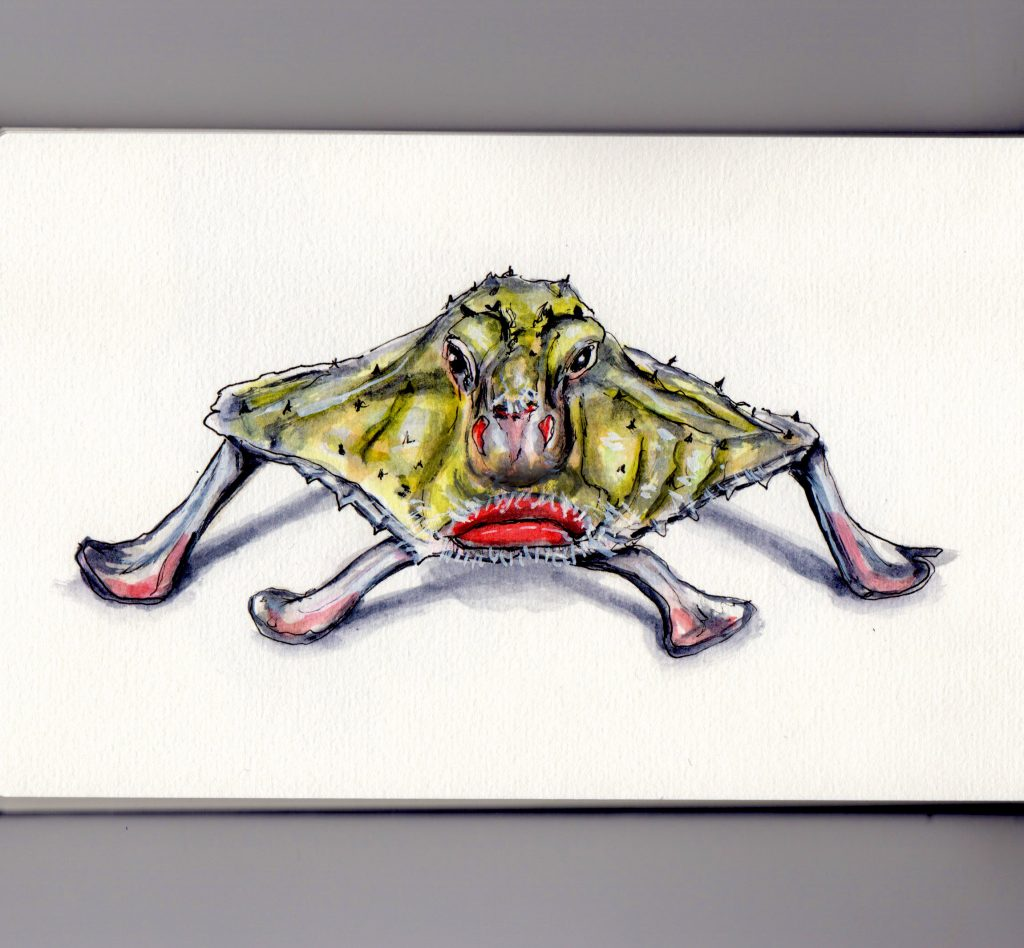 Red-Lipped Batfish Doodlewash - watercolor sketch of the walking fish of the Galapagos Islands