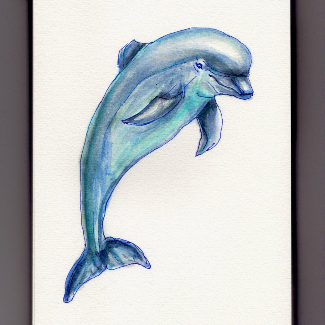 National Dolphin Day - Doodlewash watercolor of dolphin jumping out of the water