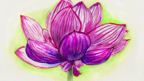 Earth Day Doodlewash and watercolor of pink purple flower blossom