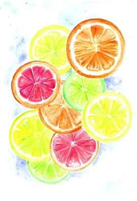 Doodlewash by Maria Christina Dina - watercolor citrus fruits oranges lemons limes
