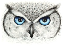Doodlewash of owl eyes in watercolor by Mette Laustsen