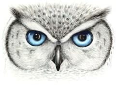 Doodlewash of owl eyes in watercolor by Mette Laustsen