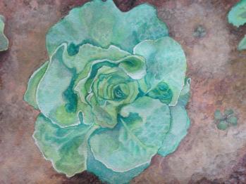 Green head of lettuce watercolor - Doodlewash by Jen Fabish