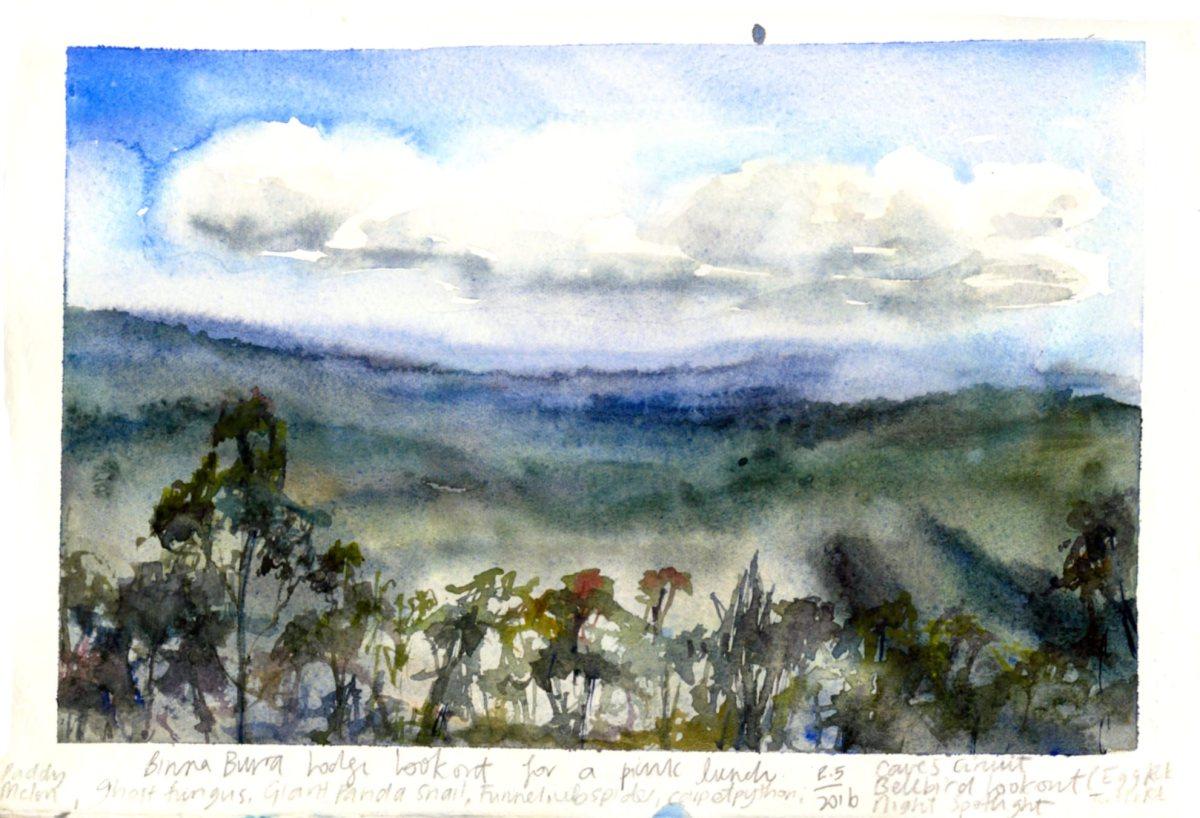 Doodlewash and watercolor sketchy by Asuka Kagawa of Binna Burra Lookout Queensland