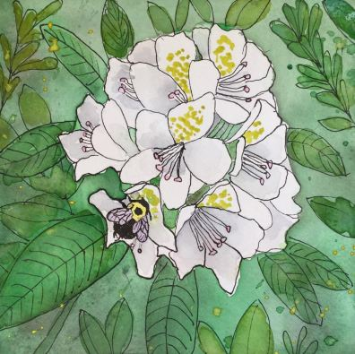 Eileen McKenna Doodlewash