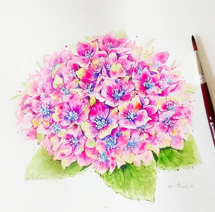 Doodlewash by Amara Strand #NatureDoodlewash watercolor pink flowers