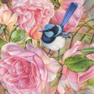 Doodlewash - watercolor painting illustration by Heidi Willis of a blue wren