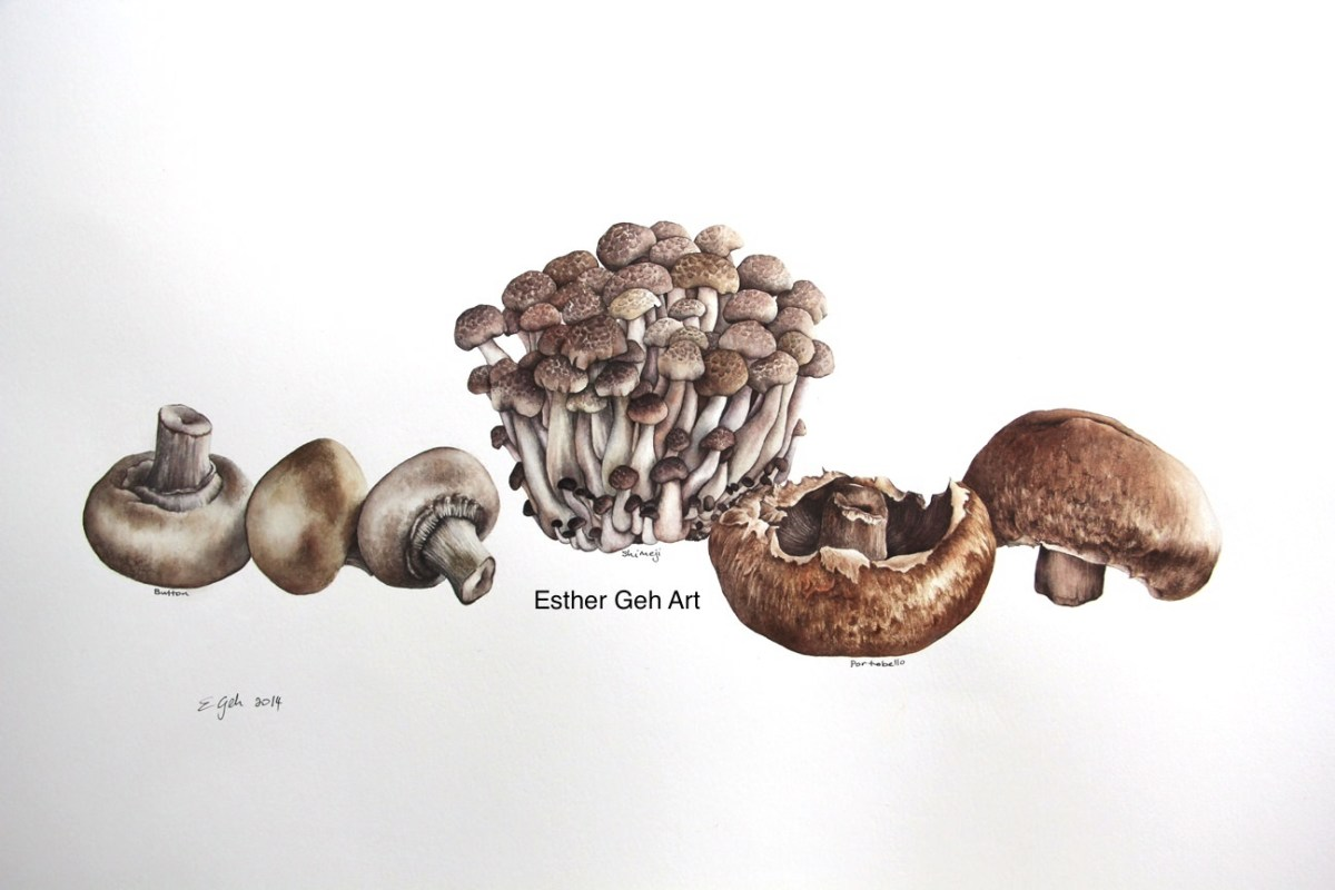 Doodlewash and watercolor painting by Esther Geh of various mushrooms