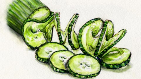 Day 7 #WorldWatercolorGroup My Favorite Vegetable Cucumbers in Summer