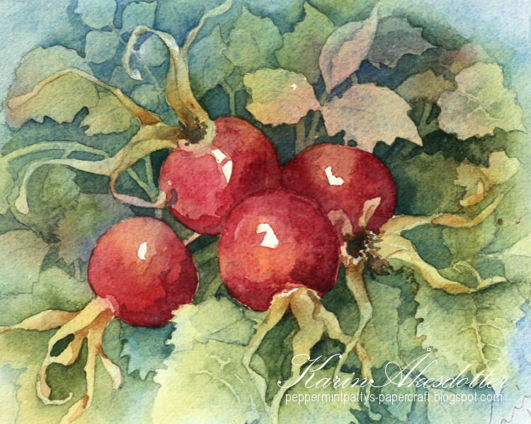 Doodlewash - watercolor painting by Karin Åkesdotter of tomatoes