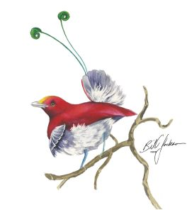 Doodlewash - Watercolor by Bill Jackson of King Bird Of Paradise