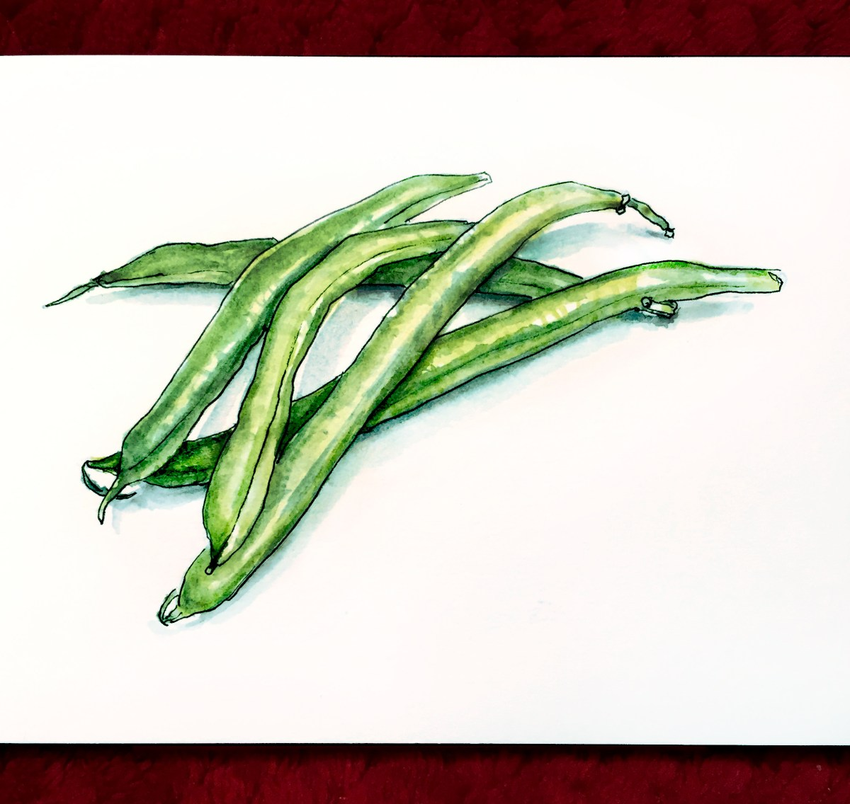 Day 18 - Les Haricots Verts Green Beans watercolour sketch
