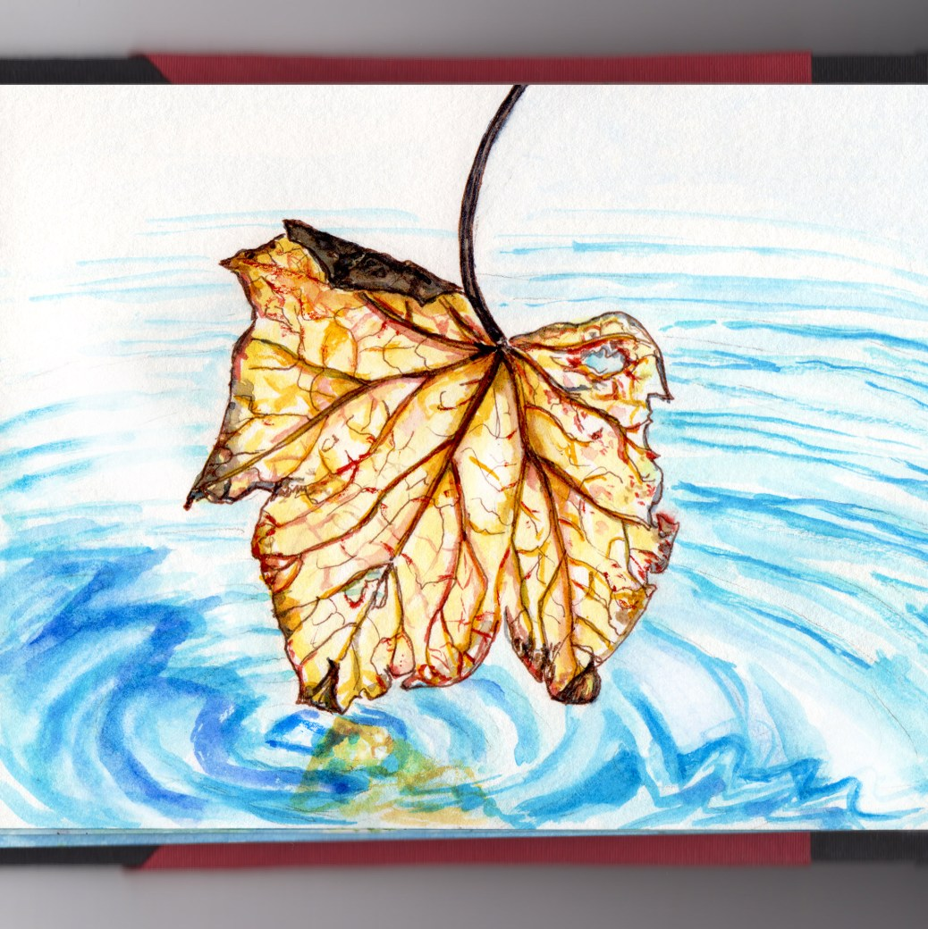 Day 15 - #WorldWatercolorGroup Chasing Leaves Autumn Winter Leaf in Puddle Water Ripple Watercolor - #doodlewash
