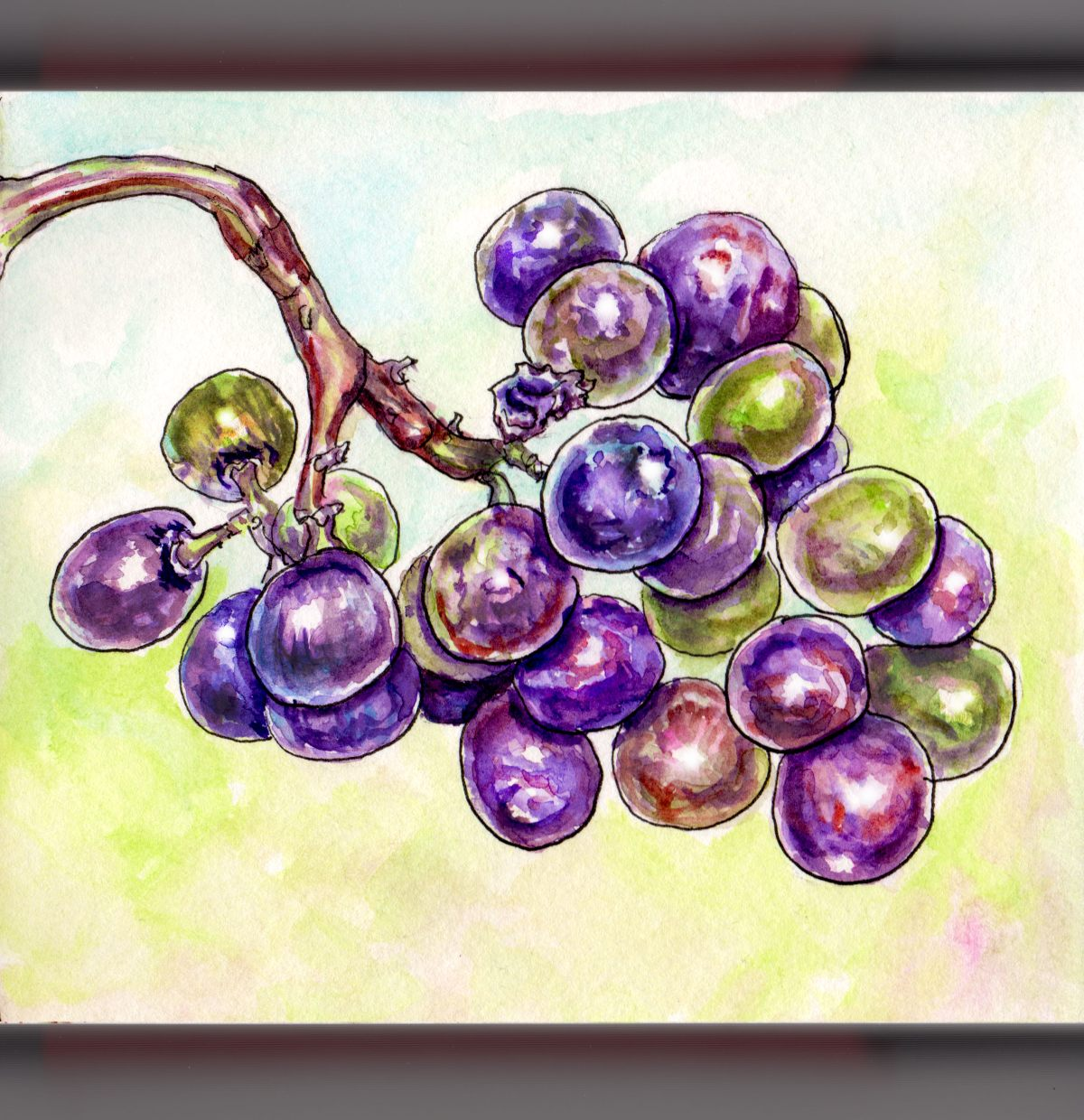 Day 18 - #WorldWatercolorGroup Grapes On The Vine Purple And Green - #doodlewash