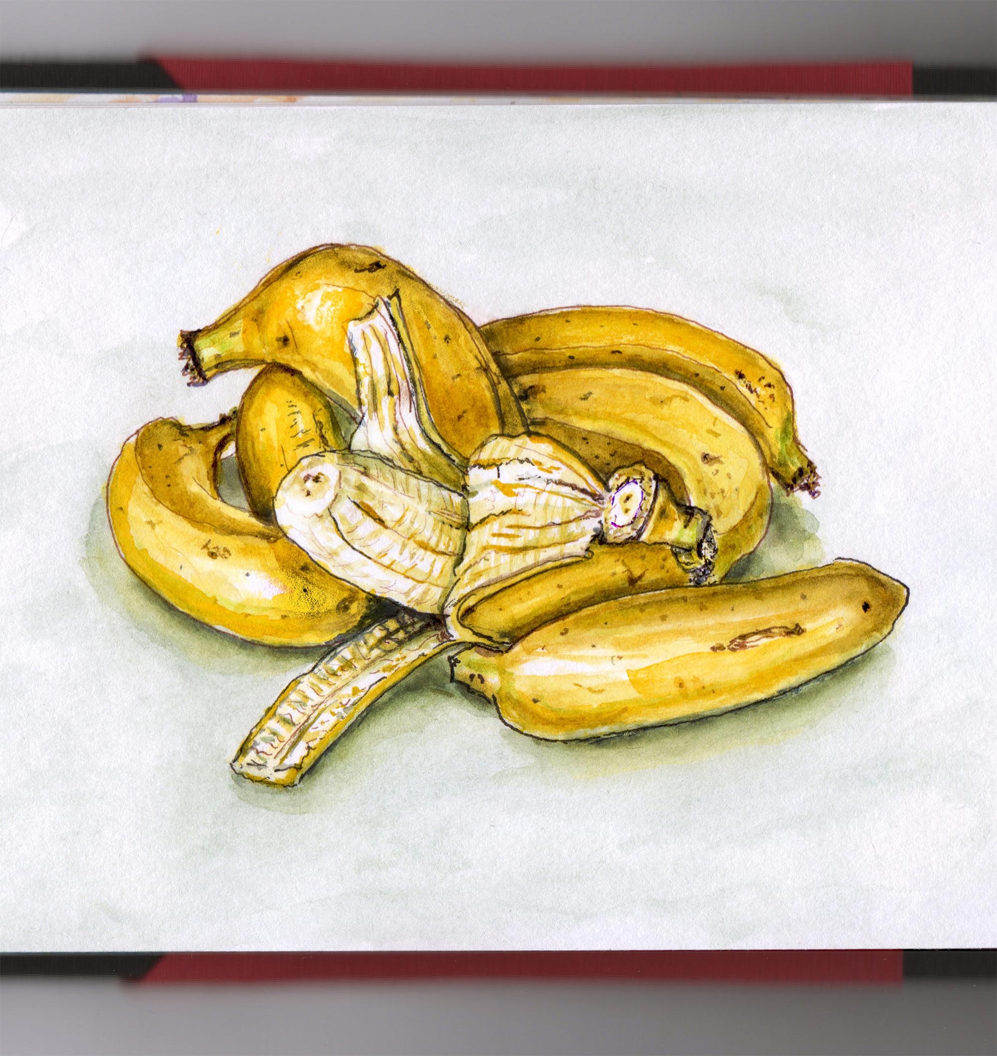 Day 25 - #WorldWatercolorGroup Bananas Are Berries Too Watercolor - #doodlewash