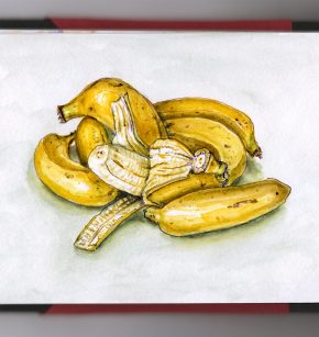 Day 25 - #WorldWatercolorGroup Bananas Are Berries Too Watercolor - #doodlewash