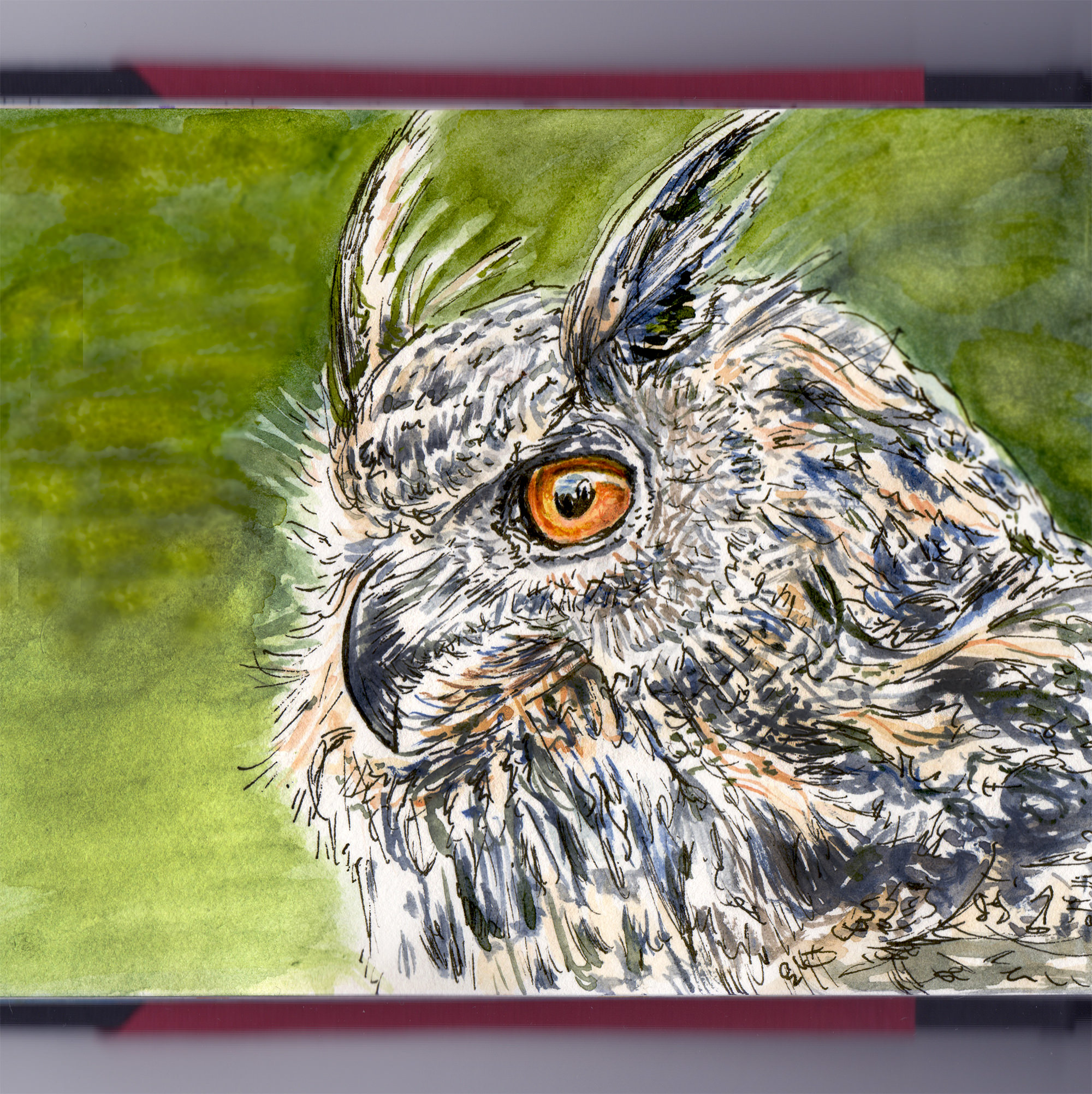Day 27 - #WorldWatercolorGroup The Owl In The Cemetery Watercolor - #doodlewash