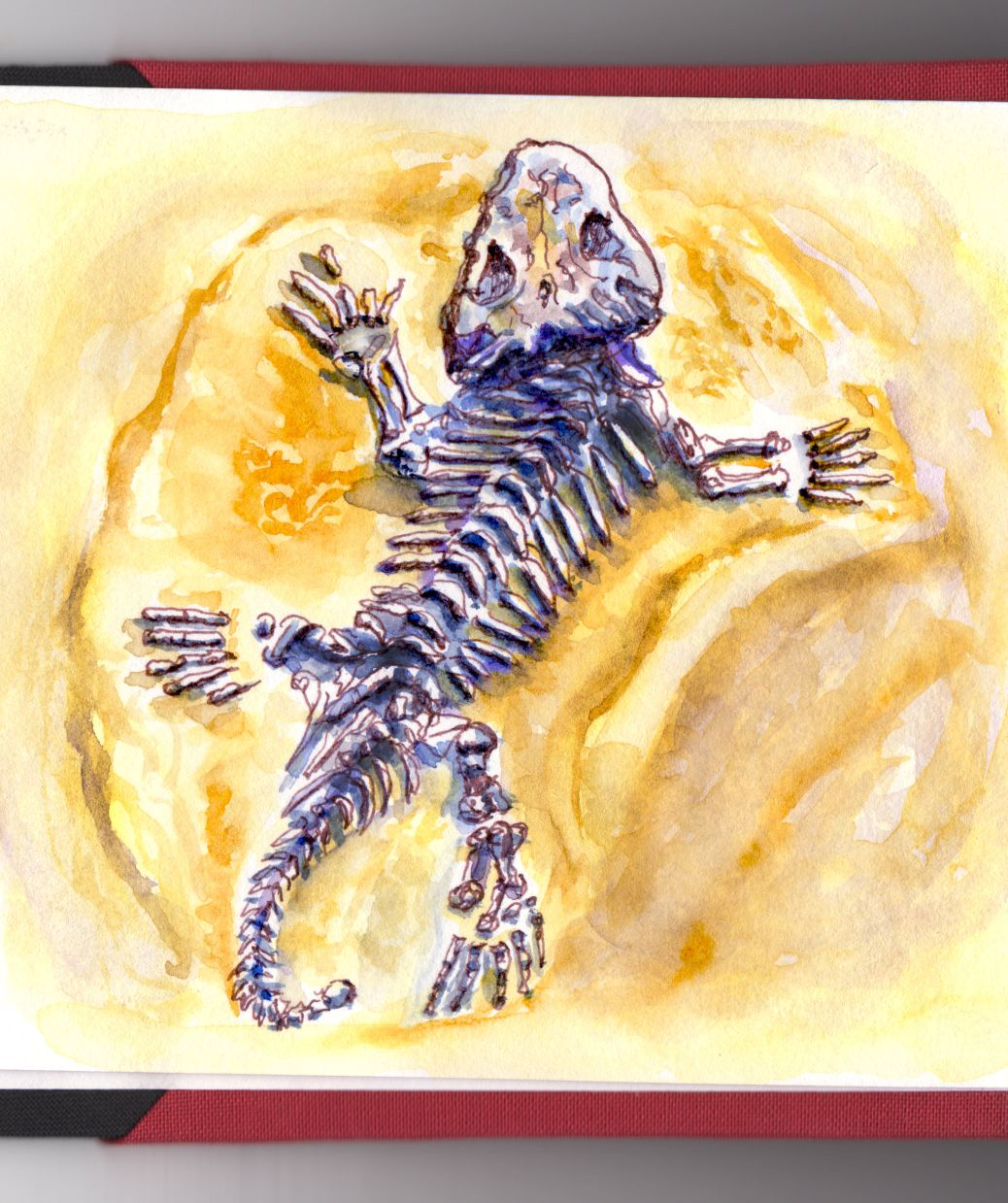 Day 3 - #WorldWatercolorGroup Fossil of Lizard Lost In Time Watercolor