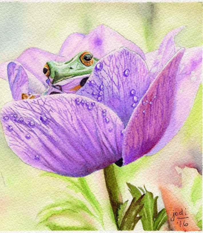 #WorldWatercolorGroup - Watercolor painting by Jodi Sones of frog in flower - #doodlewash