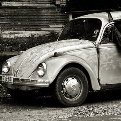 The Un-Loved Bug