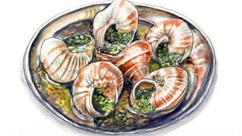 Day 14 - #WorldWatercolorGroup - Escargots In Sauce All Food Is Exotic Until You've Tried It - #doodlewash