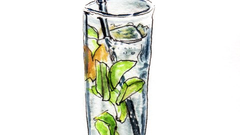 Day 23 - #WorldWatercolorGroup - A Quick Drink of Water - 15 minute sketch of a glass of fruit-infused water - #doodlewash