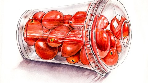 Day 3 - #WorldWatercolorGroup Feeling Saturated Cherry Tomatoes in Plastic