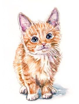 Day 9 - #WorldWatercolorGroup - Cute Kitten Golden With Big Blue Eyes - #doodlewash
