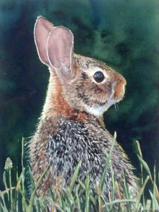 #WorldWatercolorGroup - Watercolor painting by Deb Watson - bunny - #doodlewash
