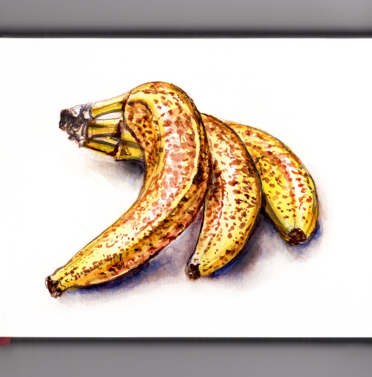 Day 5 - #WorldWatercolorGroup Ripe Bananas Watercolor - #doodlewash