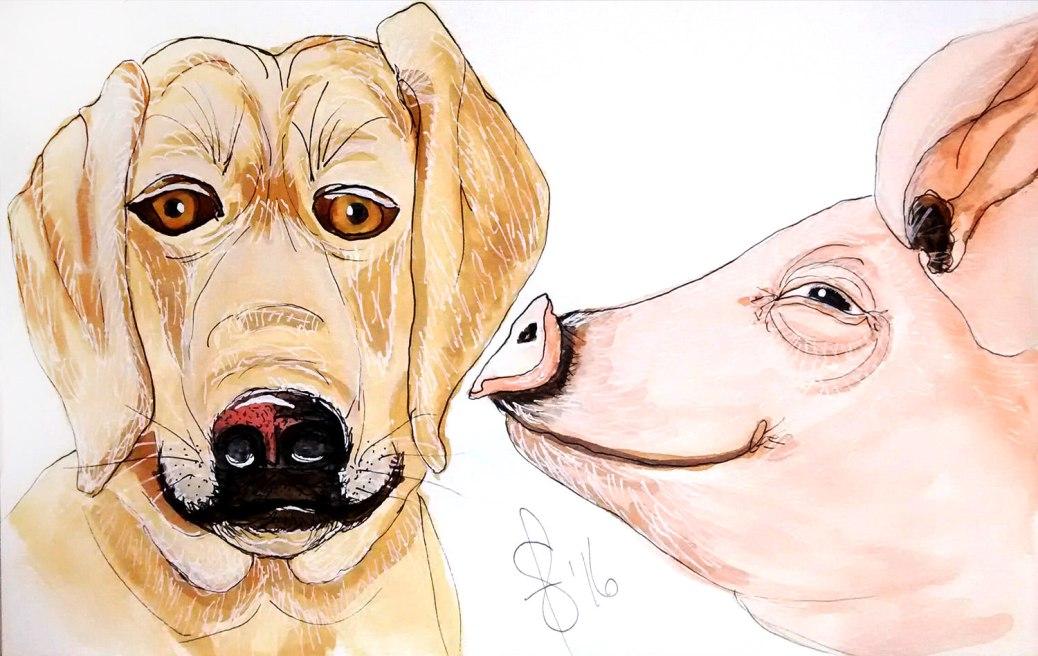 #WorldWatercolorGroup - Watercolor by Susan Feniak - Sweet Nothings - dog and pig - #doodlewash