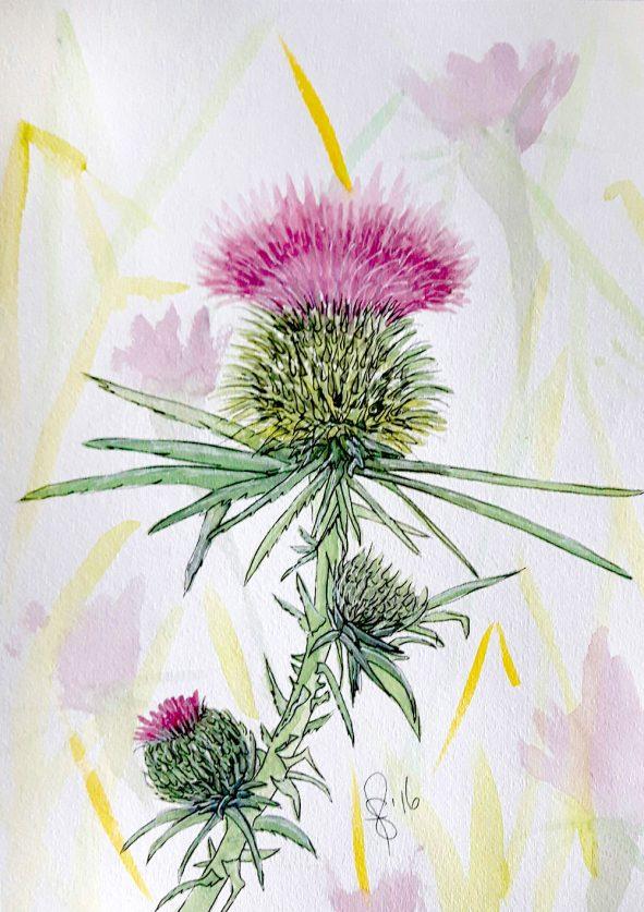 #WorldWatercolorGroup - Watercolor by Susan Feniak - thistle - #doodlewash