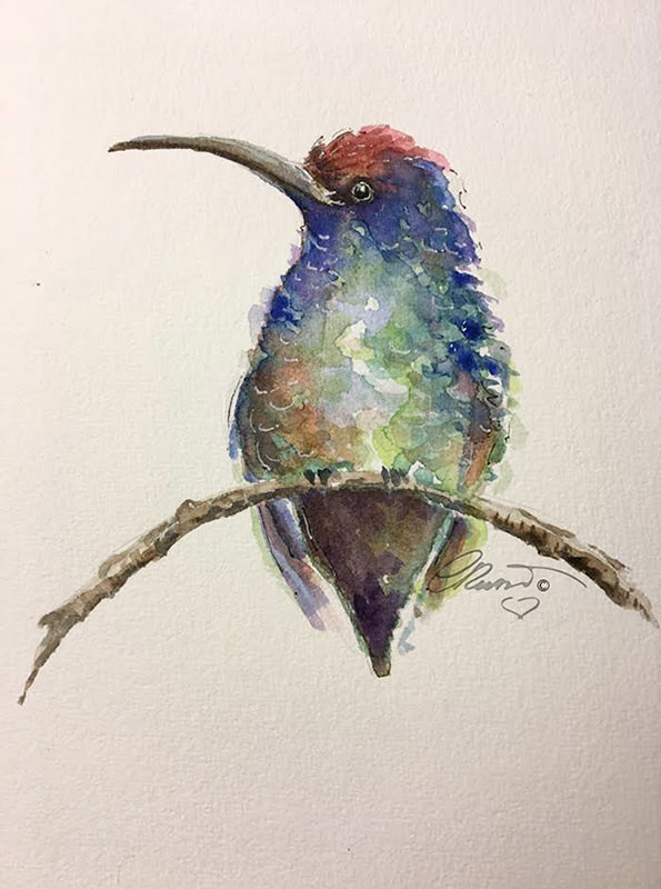 Hummingbird1_s