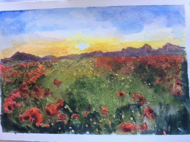 Poppies in late evening. Fabriano Artistico 140lbs 14×10. Qor quinacridone gold,hansa yellow li