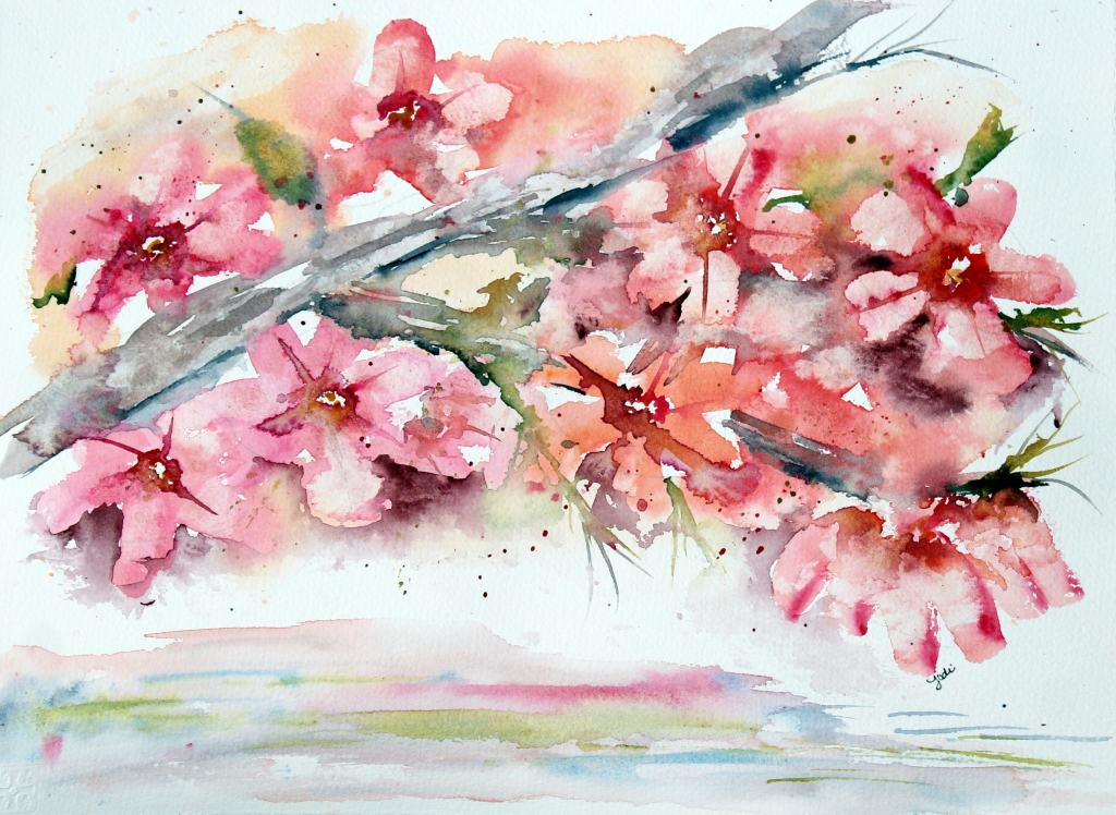 Pink Dogwood Blossoms Pink Dogwood Blossom Watercolor 11×14 140 lb Cold Press Saunders