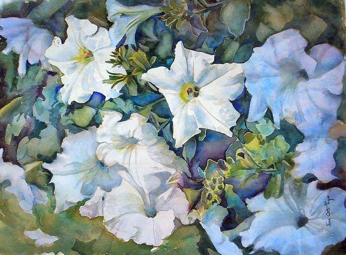 White Petunias WC 20×30 32-Infan view 035