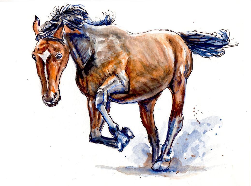 Day 17 - World Watercolor Month - Horse Running Wild Watercolor - Doodlewash