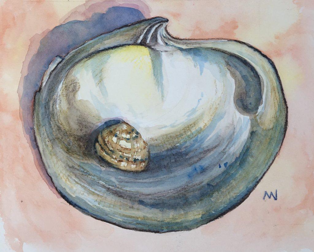 Day 3. Shells. IMG_0356