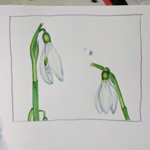 Day 2, Snowdrops I used a photo reference from Pixabay. IMG_20170703_161914_052
