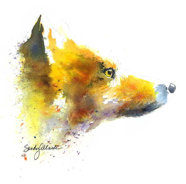 World Watercolor Month - Watercolor by Sandy Allnock - Focus - Doodlewash