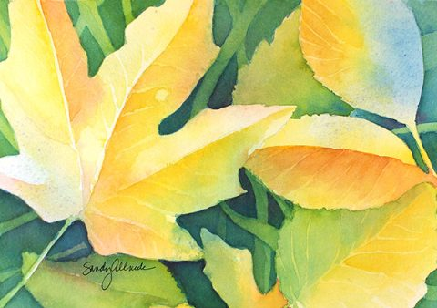 """GUEST ARTIST: """"Create Every Day"""" by Sandy Allnock"""
