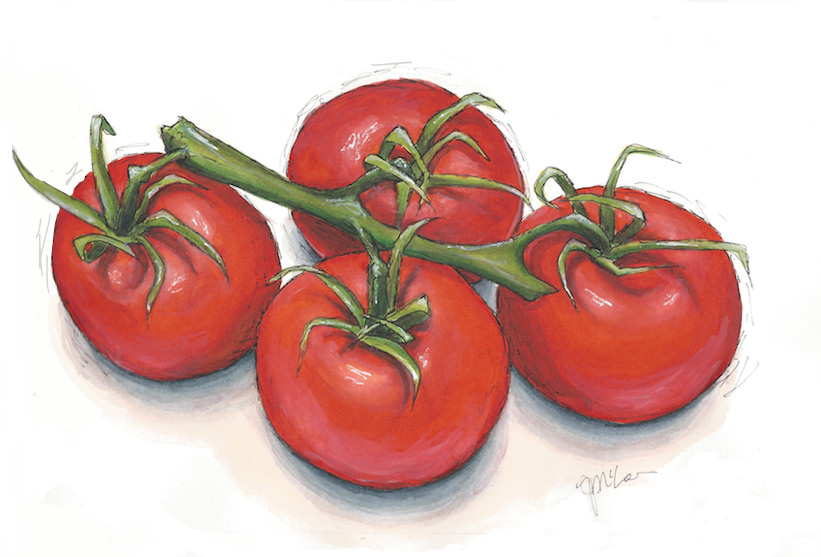 Tomatoes Scanned