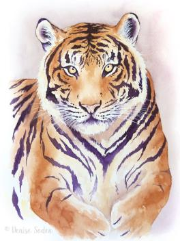 #WorldWatercolorGroup - Watercolor by Denise Soden - tiger - Doodlewash