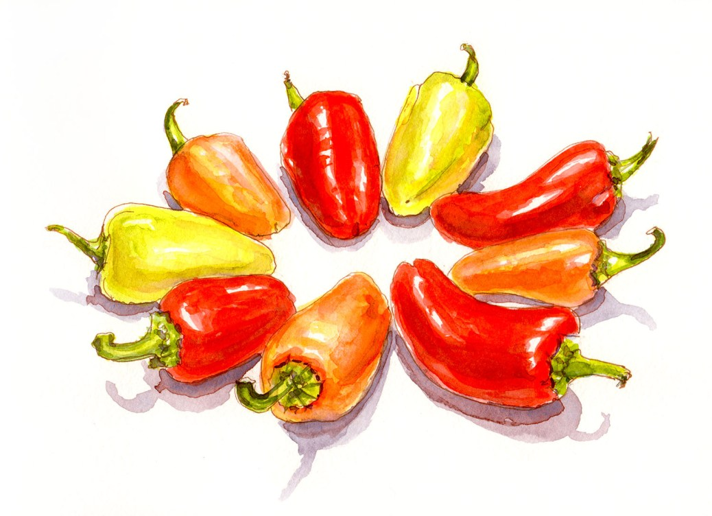 #WorldWatercolorGroup - Day 23 - My Favorite Vegetable - Colorful Peppers - Doodlewash