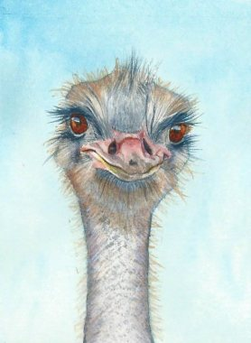 #WorldWatercolorGroup - Watercolor by Rebecca Rhodes - ostrich - Doodlewash