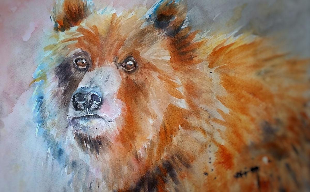 #WorldWatercolorGroup - Watercolor by Terhi Kalliola - Bear - Doodlewash